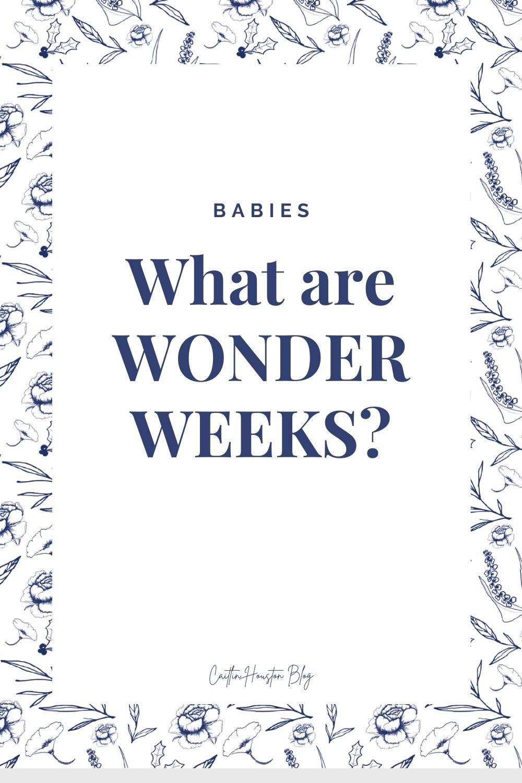 Wonder Weeks Developmental Periods in Babies