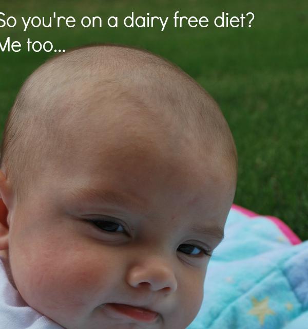 Dairy Free Diet Ideas