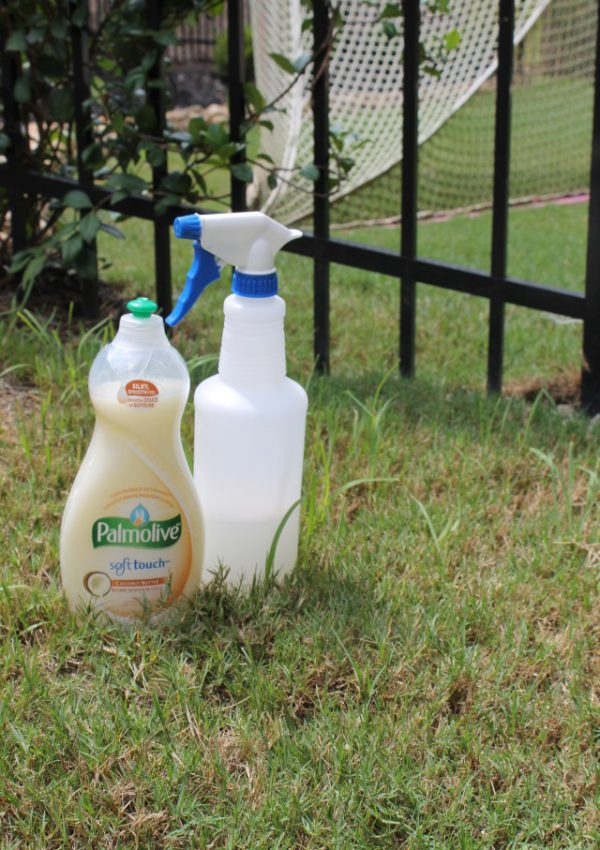 Kill Weeds with Palmolive Soap