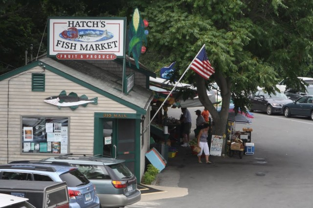 wellfleet hatch's fish market