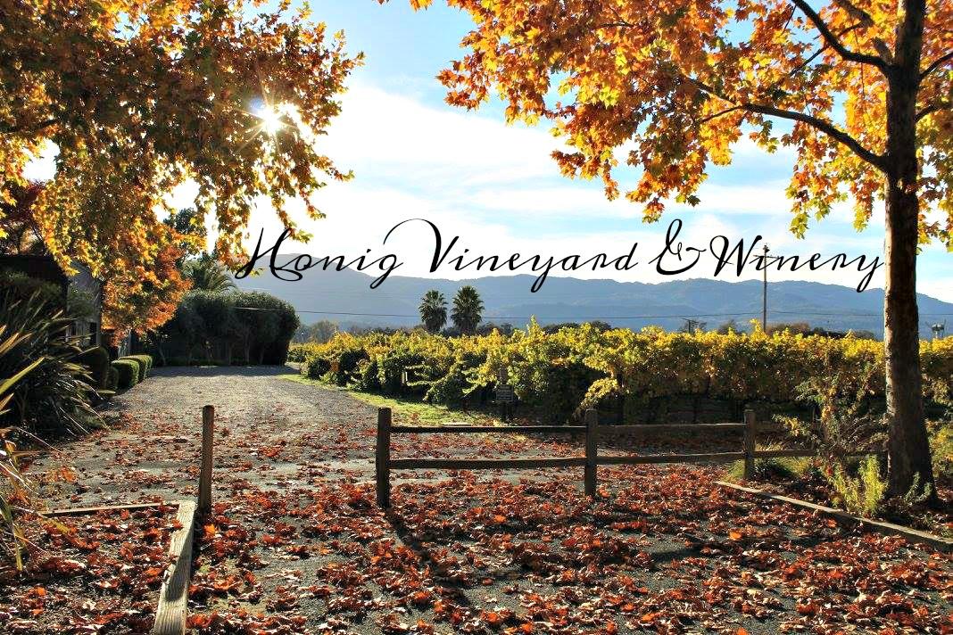 Top Napa Valley Wineries - Honig