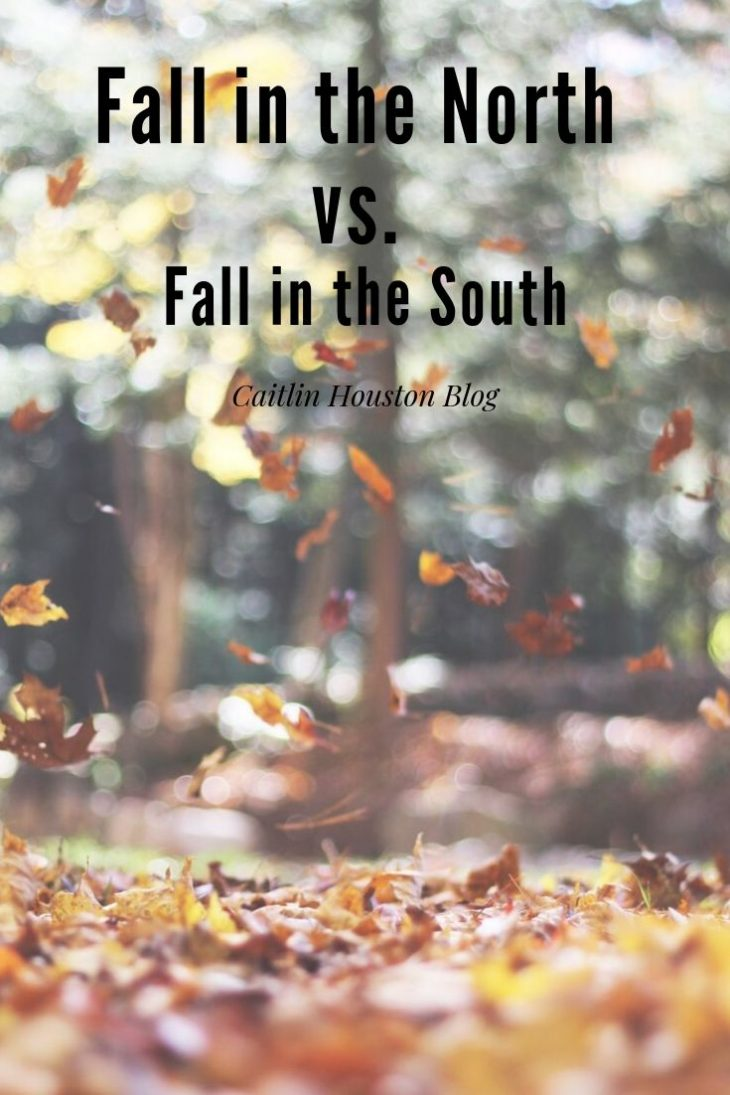 Fall in the North v Fall in the South