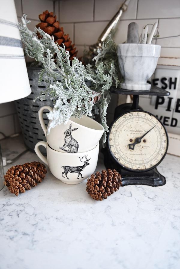 Winter Kitchen Decor