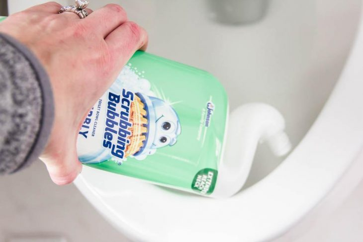 Toilet Cleaning for Spring