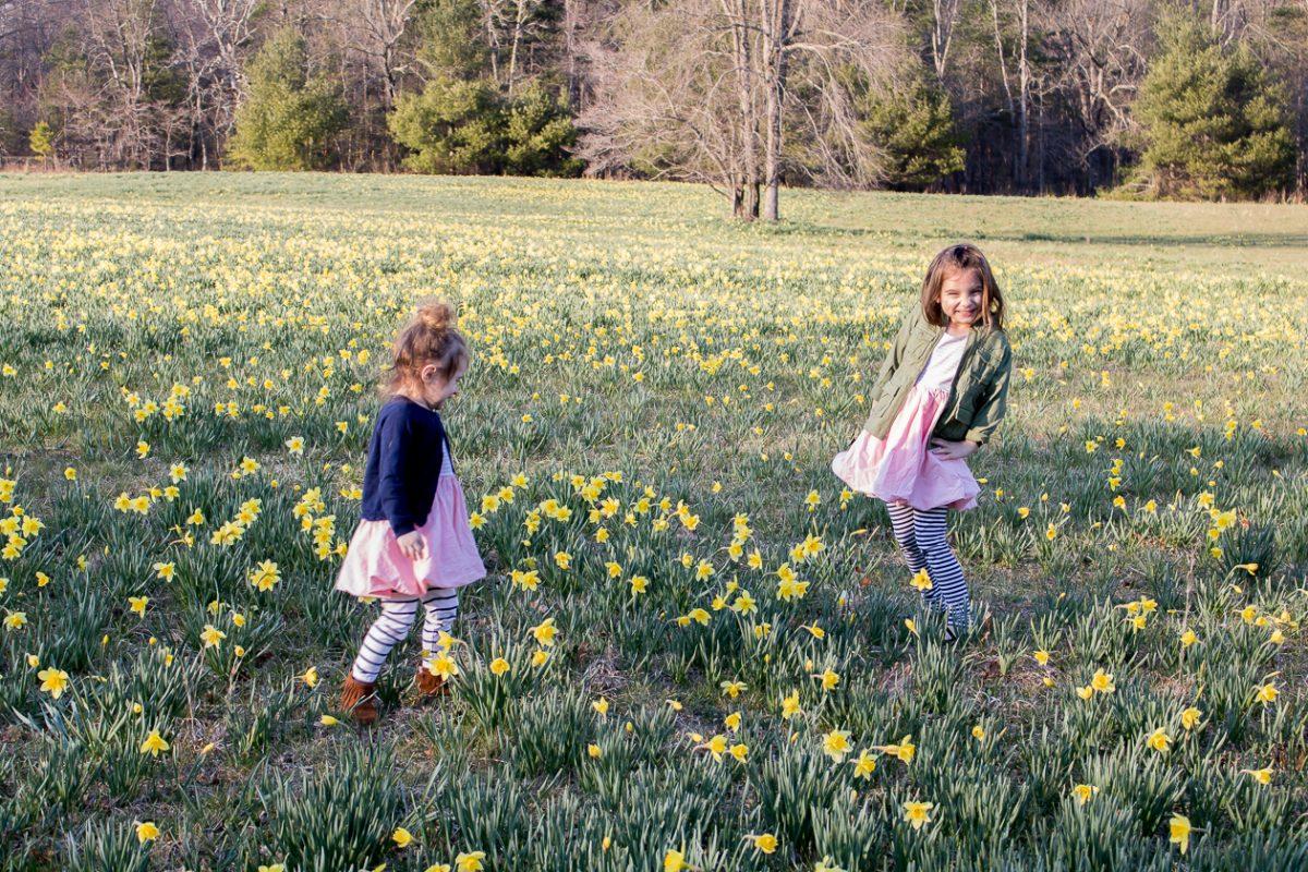 Little Girls in a Daffodil Field