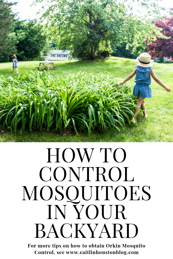 Mosquito Free Summer with Orkin Mosquito Control for Backyard