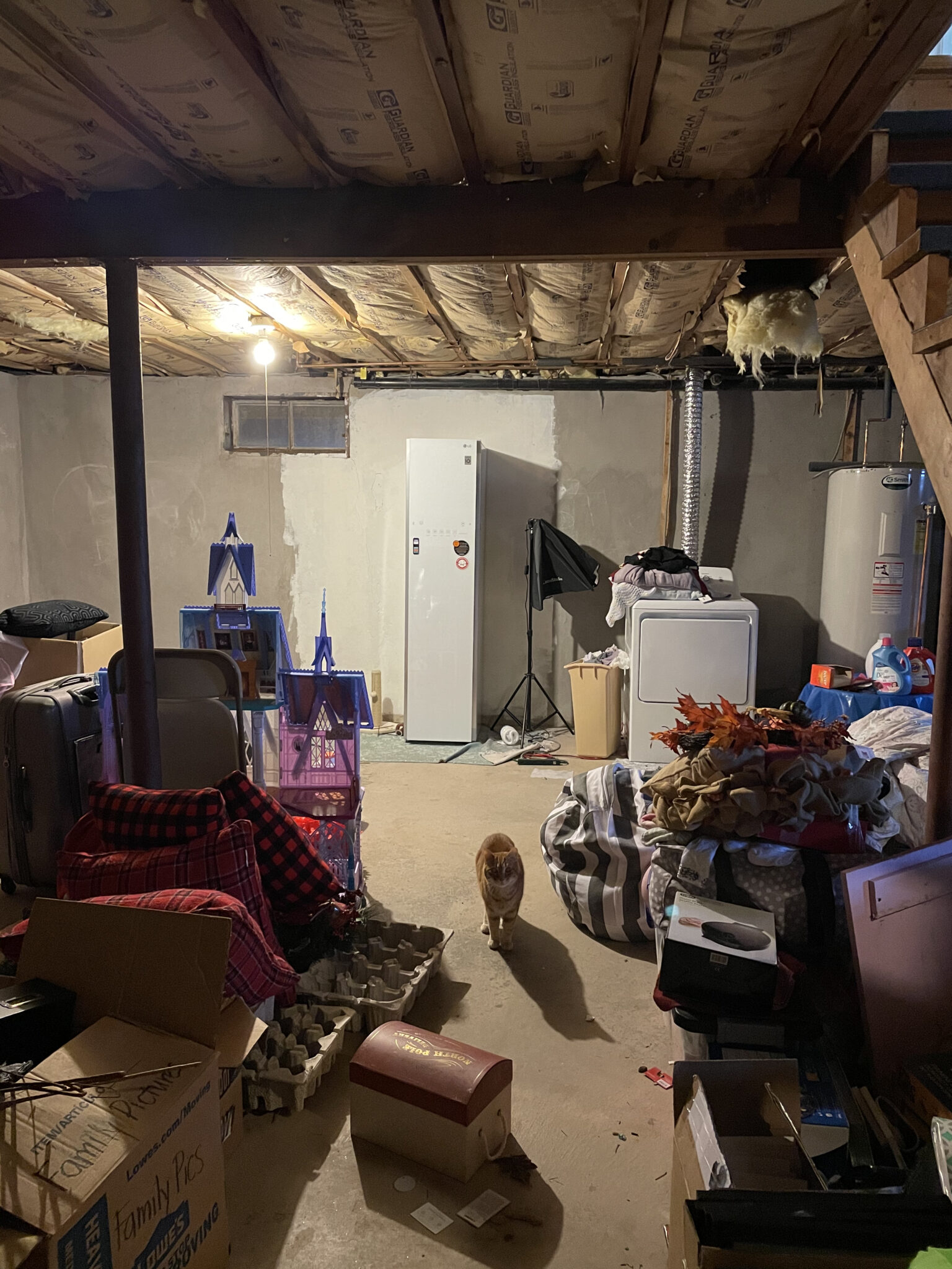 Life Lately August - Basement Before Renovation Picture