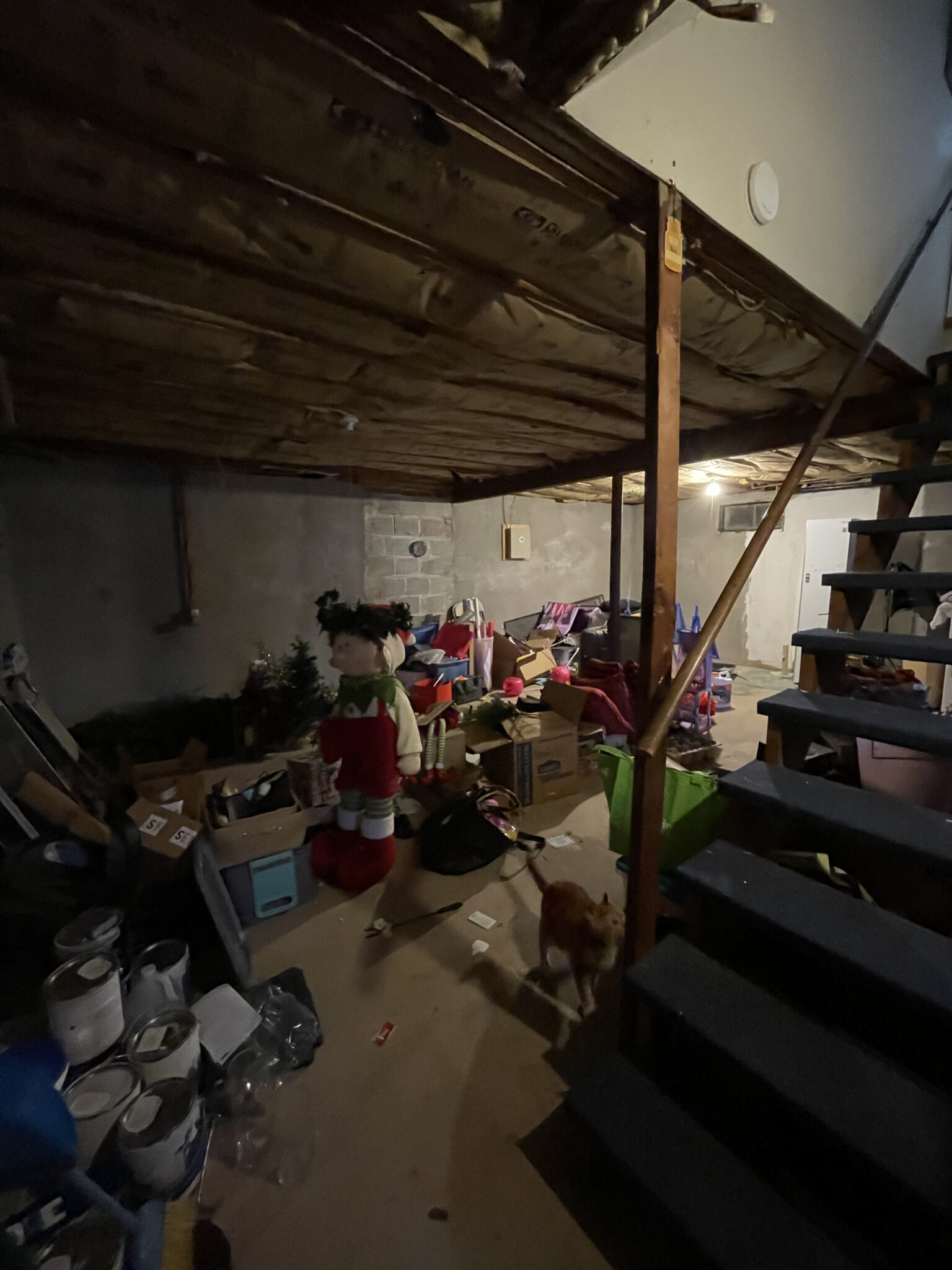 basement before renovation picture